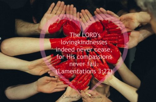 Lamentations 3.22 by EmbraceThisSeason.com